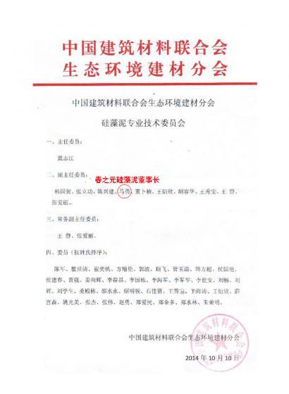 硅藻泥专业技术委员会副主任委员-马勇