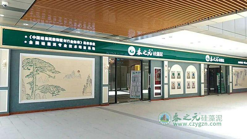 上海金山-2