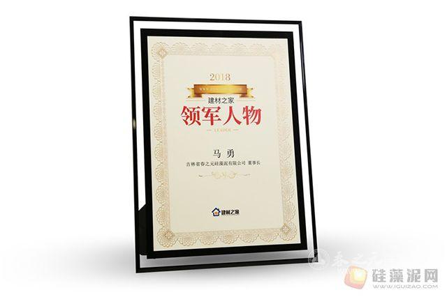 春之元董事长马勇先生荣获建材之家领军人物称号